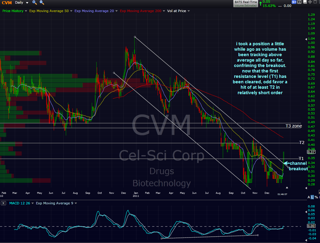 Cvm stock options