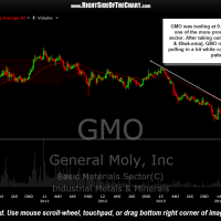 GMO weekly April 30th