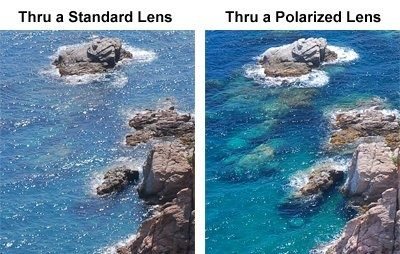 polarized vs non-polarized lens